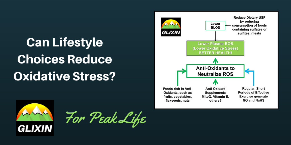 Can Lifestyle Choices Reduce Oxidative Stress?