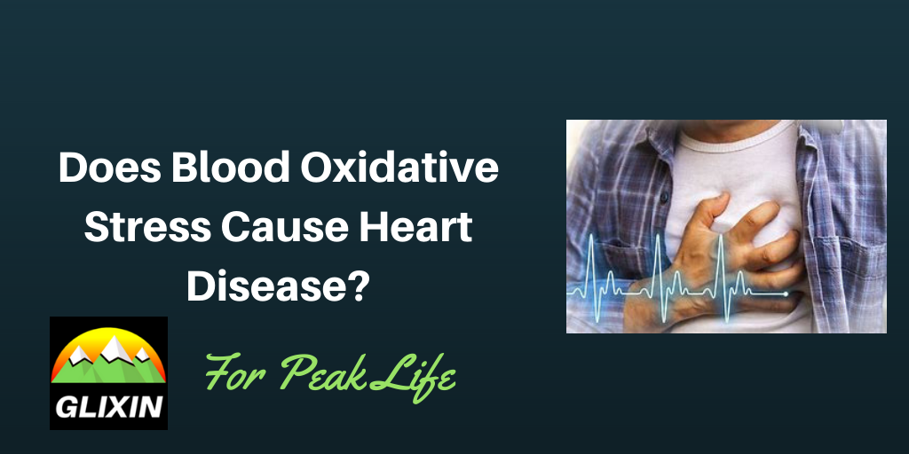 Does Blood Oxidative Stress Cause Heart Disease?