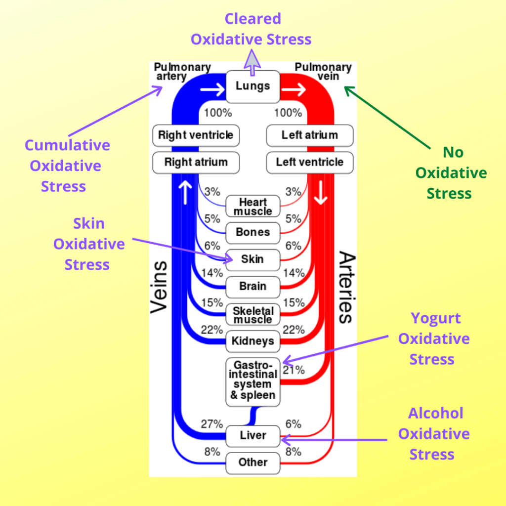 Impact of Non-BLOS Types of oxidative stress